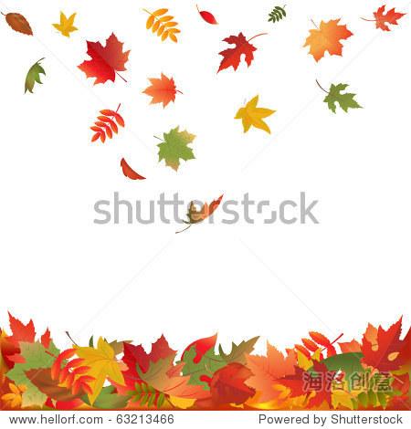 秋天的落叶,孤立在白色背景,矢量插图
