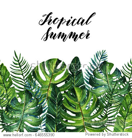Tropical summer, Watercolor illustration. Different leaves. Background white. postcard for you, set, handmade