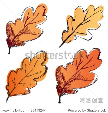 橡树的叶子