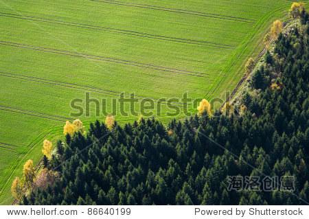 在绿色田野和森林鸟瞰图