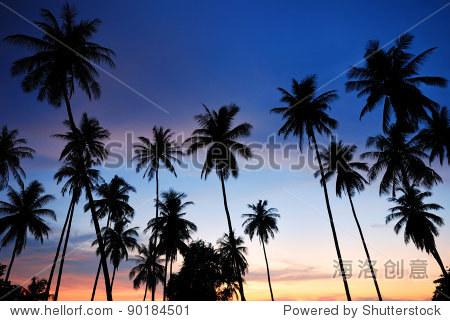 椰子树在热带沙滩上日落