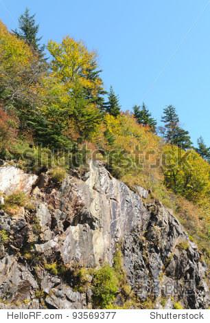 山毛榉差距曲线岩石蓝岭风景区干道