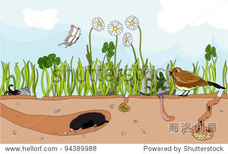 矢量图的自然地下昆虫和小动物