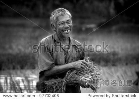 快乐的农夫