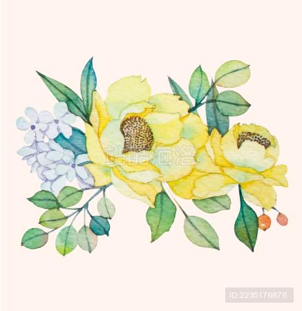 花朵手绘 - 站酷海洛 - 正版图片,视频,字体,音乐素材