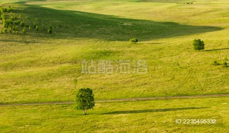 壁纸 草原 成片种植 风景 植物 种植基地 桌面 450_282