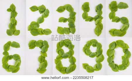 71数字矢量图
