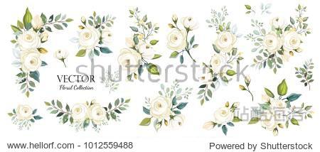 Set of floral branch. Flower white rose  green leaves. Wedding concept. Floral poster  invite. Vector arrangements for greeting card or invitation design background