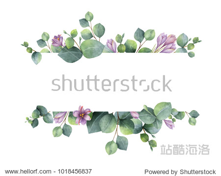 Watercolor hand painted banner with green eucalyptus leaves  purple flowers and branches. Spring or summer flowers for invitation  wedding or greeting cards.