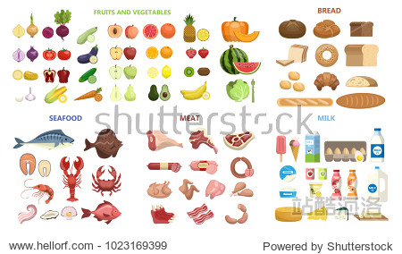 All food set. Fruits and vegetables  meat and diary  seafood and bread.