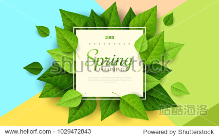 Spring background with green leaves and square frame on trendy geometric backdrop. Vector illustration. Fresh template design for posters  flyers  brochures or vouchers.