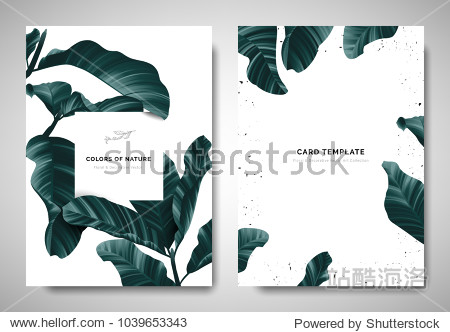 Greenery greeting/invitation card template design  dark green leaves with white square frame on white background