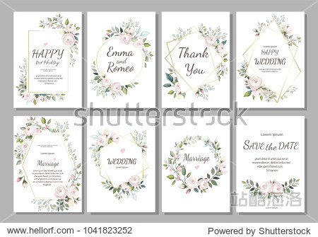 Set of card with flower rose  leaves and geometrical frame. Wedding ornament concept. Floral poster  invite. Vector decorative greeting card  invitation design background
