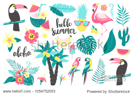 Summer set of design elements tropical leaves  flowers  fruits  flamingos  toucan  parrot. Vector illustration