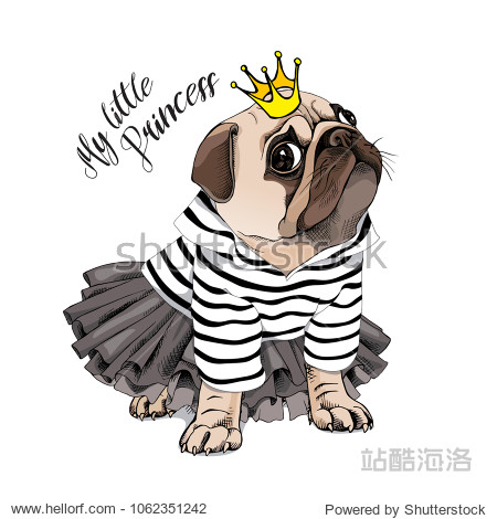 Pug Dog in a striped cardigan  in a black tutu skirt and with a gold princess crown. Vector illustration.