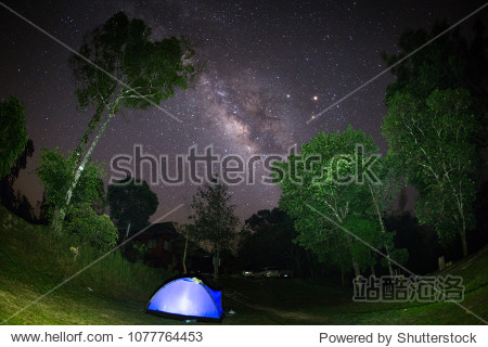 Milky way in the dark sky. turn on the light in tent. Tall tree in forest.