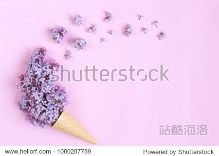 Flowers in a waffle cone on a pink background. Flat lay  top view floral background.