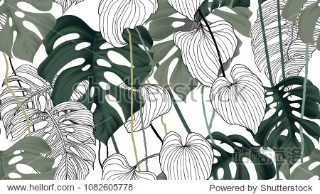 Floral seamless pattern  green  black and white split-leaf Philodendron plant with vines on white background  pastel vintage theme