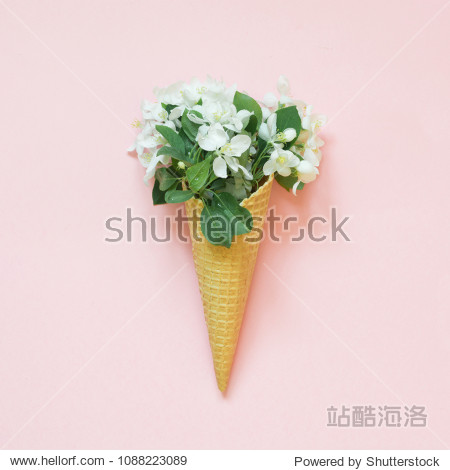 Creative minimalism still life of white spring flower in waffle cone on pink background. Spring concept. Top view.