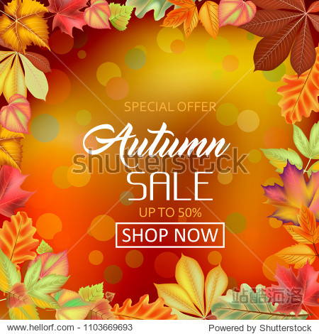 Poster on a red-orange background. Autumn sale  framed with leaves. Template for posters  postcards  announcements