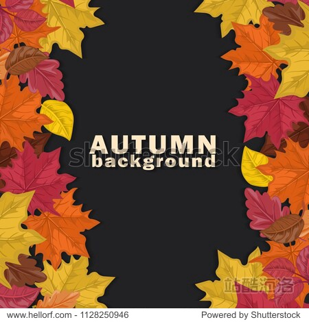 Autumn background with colorful leaves on dark  background. Vector illustration.