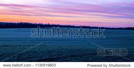 American Frosty Grassland