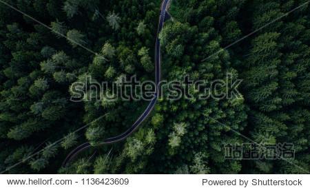 Narrow street between woodland  drone's view
