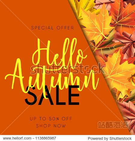 Autumn sale banner isolated with leaves maple on orange background