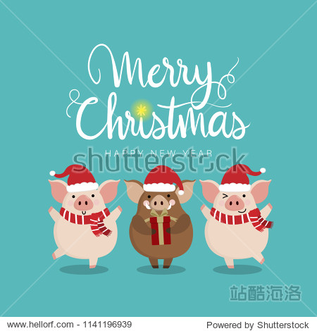 Merry Christmas greeting card with cute piggy and boar. 2019 the year of the pig. Animal in winter costume. Calligraphy hand written.