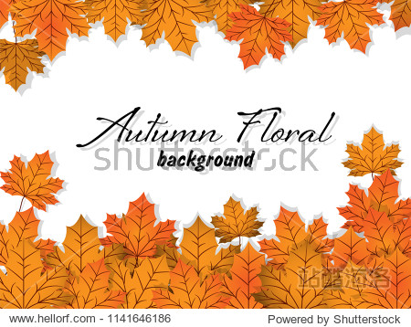 Autumn floral background with autumn leaves.