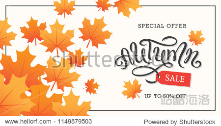 Autumn sale banner design with hand drawn lettering and maple leaves. Fall background.