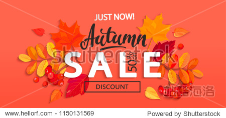 Banner for Autumn sale with colorful seasonal fall leaves and rowan for shopping discount promotion. Vector illustration.