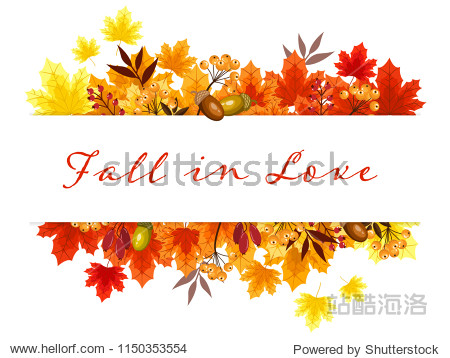 Autumn floral background with autumn leaves  acorns  seeds and berries.