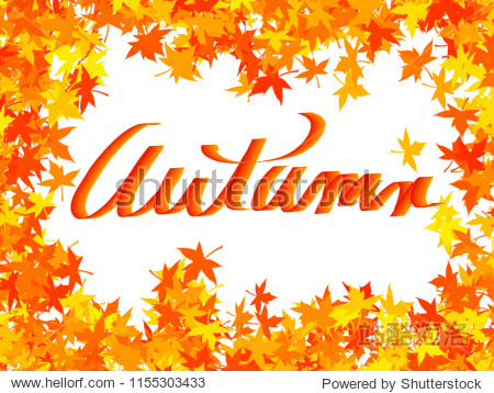 Autumn - brightly colored leaves