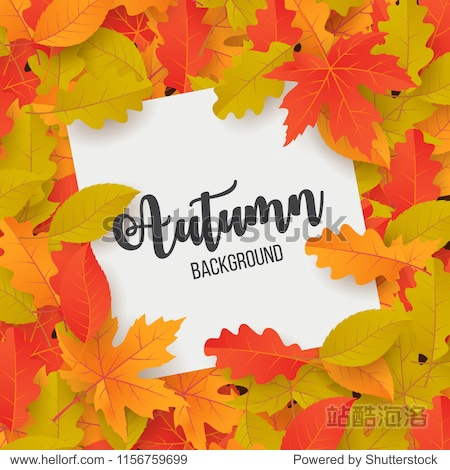 Autumn backround with leaves. Vector illustration
