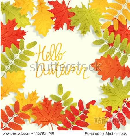 Abstract vector illustration autumn background with falling autumn leaves