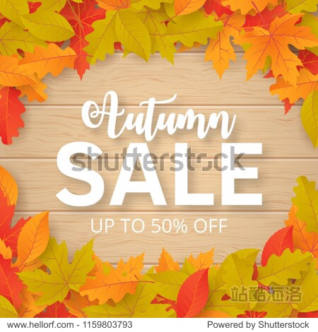 Autumn sale background with leaves. Can be used for shopping sale  promo poster  banner  flyer  invitation  website or greeting card. Vector illustration