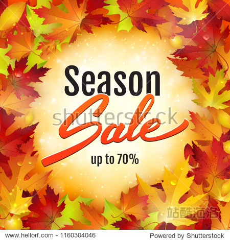 Season sale advertisement banner with red maple leaves  poster  retail  discount  vector illustration