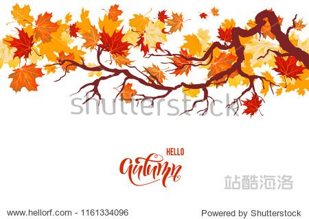 Autumnal maple branch