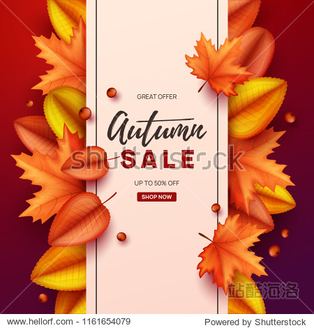Autumn banner with colorful leaves. Vector illustration.