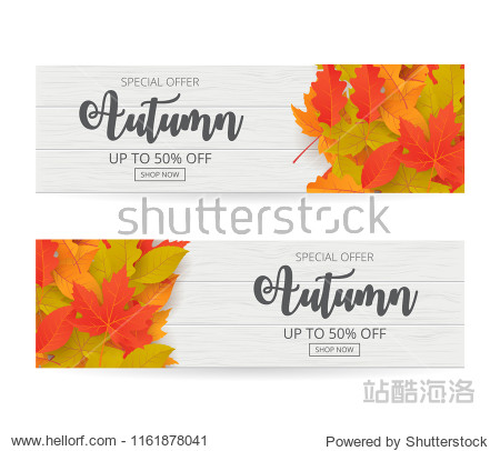 Autumn sale banner set with leaves. Can be used for shopping sale  promo poster  banner  flyer  invitation  website or greeting card. Vector illustration