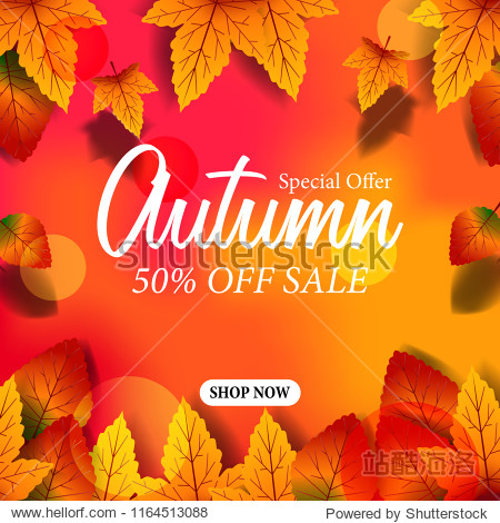 autumn leaves fall with bokeh background. sale offer template. poster discount template. vector illustration