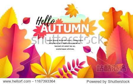 Text Hello Autumn and space for text. Autumn sale flyer template for your text. Vector Background of bright falling red  yellow and golden autumn leaves of oak  aspen  chestnut  rowan. Autumn banner