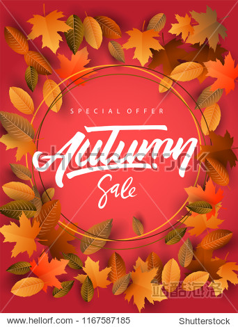 Autumn Sale Background  Hand Drawn Autumn calligraphy with falling leaves  Web Banner  shopping sale or seasonal poster  Postcard and Invitation card. Vector illustration
