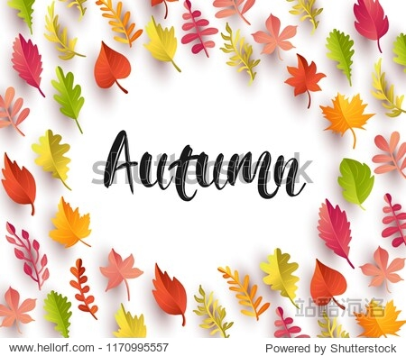 Autumn lettering inscription decorated frame leaves. Autumnal vector background