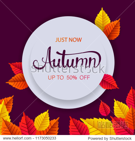 Autumn 50% sale round promotion card with golden leaves. Shopping just now. Vector background.