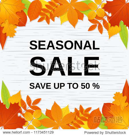 Autumn sale banner. Vector. Seasonal poster template with fall leaves. Flyer  card  label  web design. Bright background. Illustration with colorful leaf.