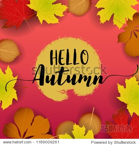 Hello Autumn banner. paper colorful tree leaf maple  rowan leaves on wood texture background.