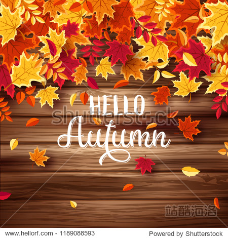 Autumn falling leaves with wood. Nature background with red  orange  yellow foliage. Flying leaf. Season sale. Vector illustration.Wooden texture.