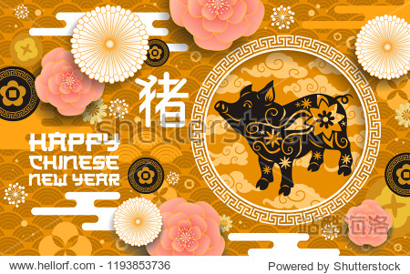 Chinese New Year of pig poster zodiac animal from oriental horoscope. Holiday postcard with flowers and pattern. Livestock domestic animal and hieroglyph  sakura blossom origami spring festival vector